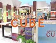 放送内容詳細:TNCテレビ西日本「土曜NEWSファイル CUBE(キューブ)」